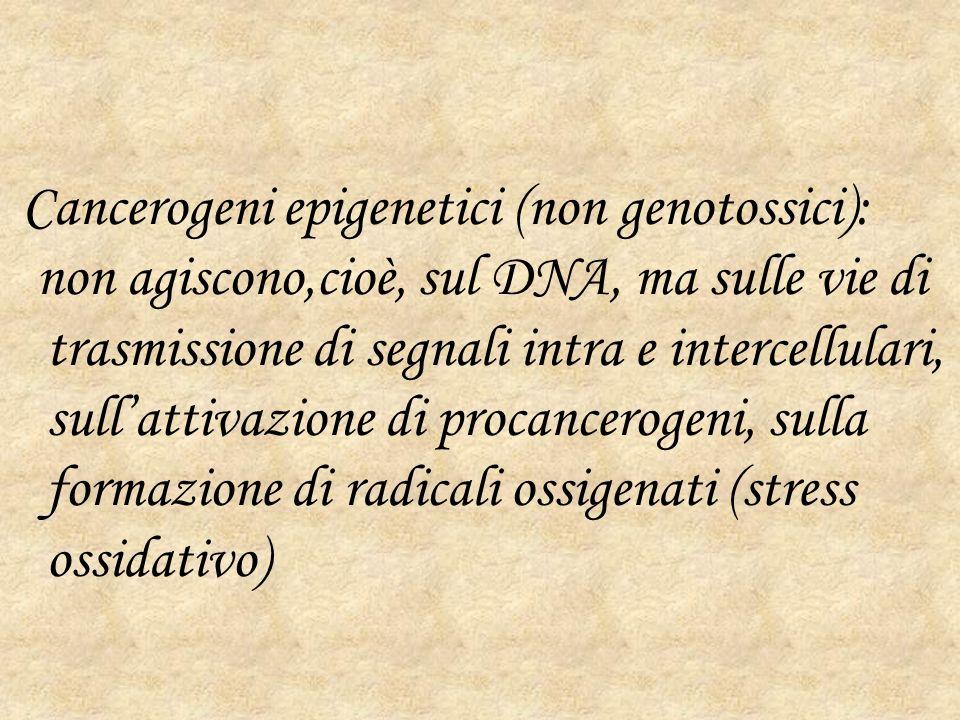 Cancerogeni epigenetici (non genotossici):