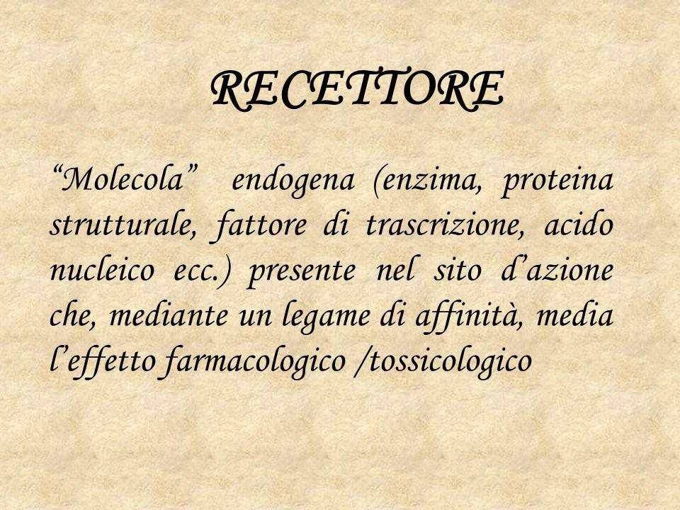 RECETTORE
