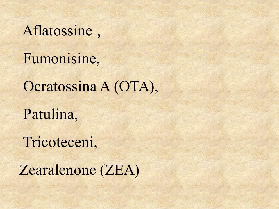 Aflatossine , Fumonisine, Ocratossina A (OTA), Patulina, Tricoteceni, Zearalenone (ZEA)