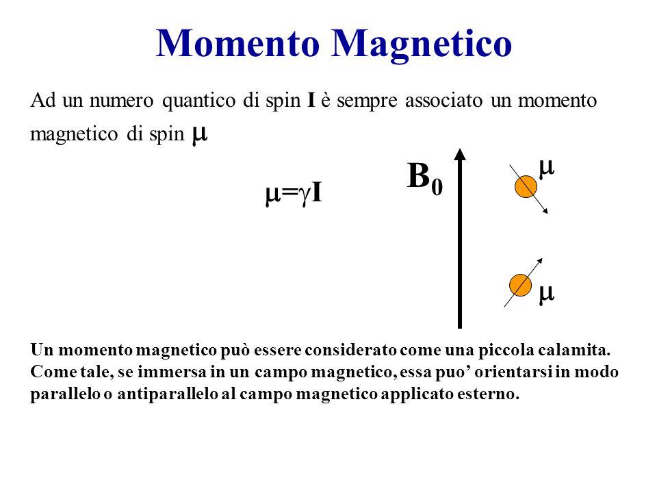Momento Magnetico B0 m m=gI m