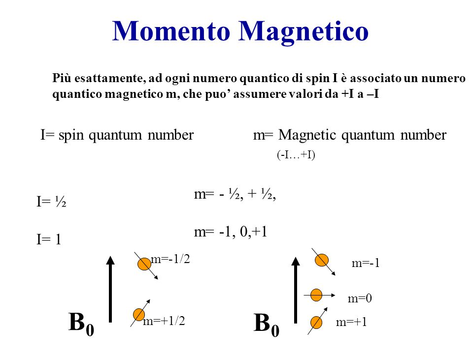 Momento Magnetico B0 B0 I= spin quantum number