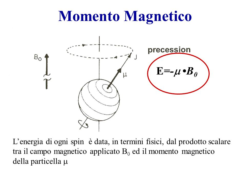 Momento Magnetico E=-m •B0
