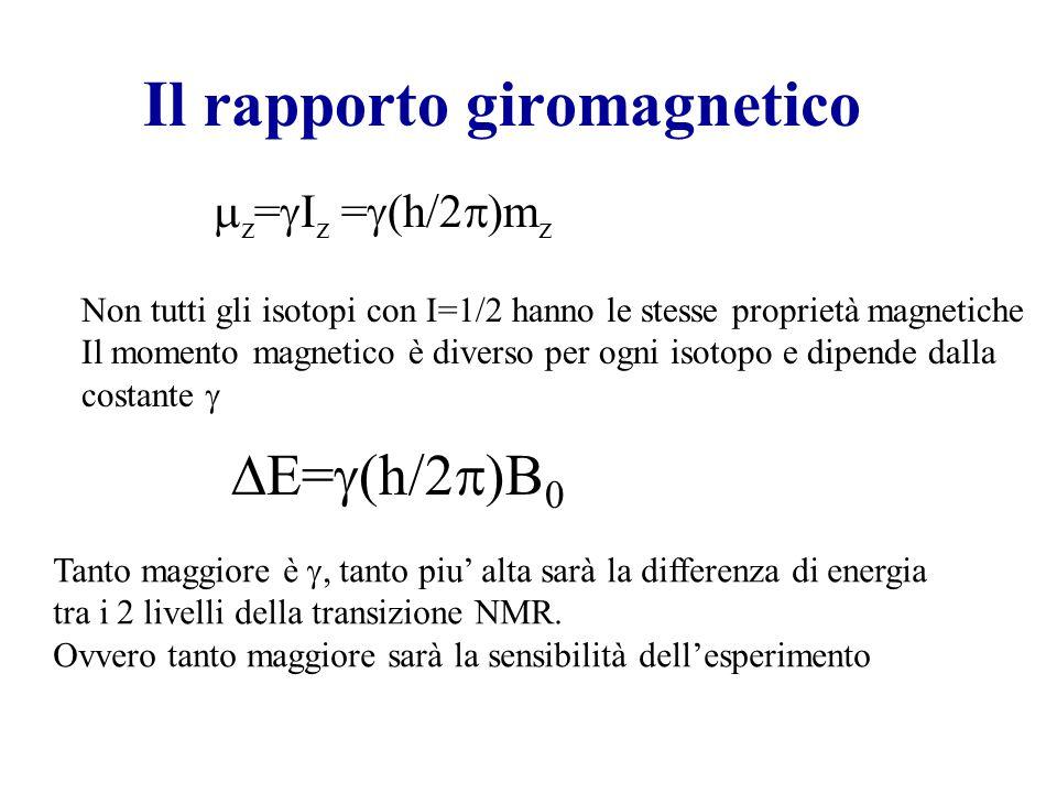 Il rapporto giromagnetico