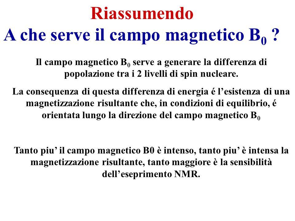A che serve il campo magnetico B0