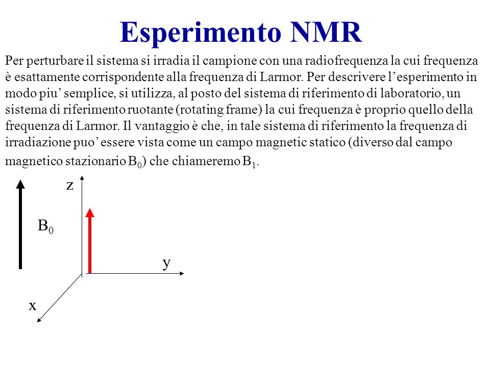 Esperimento NMR