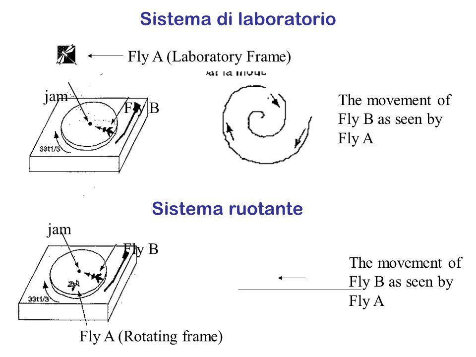 Sistema di laboratorio
