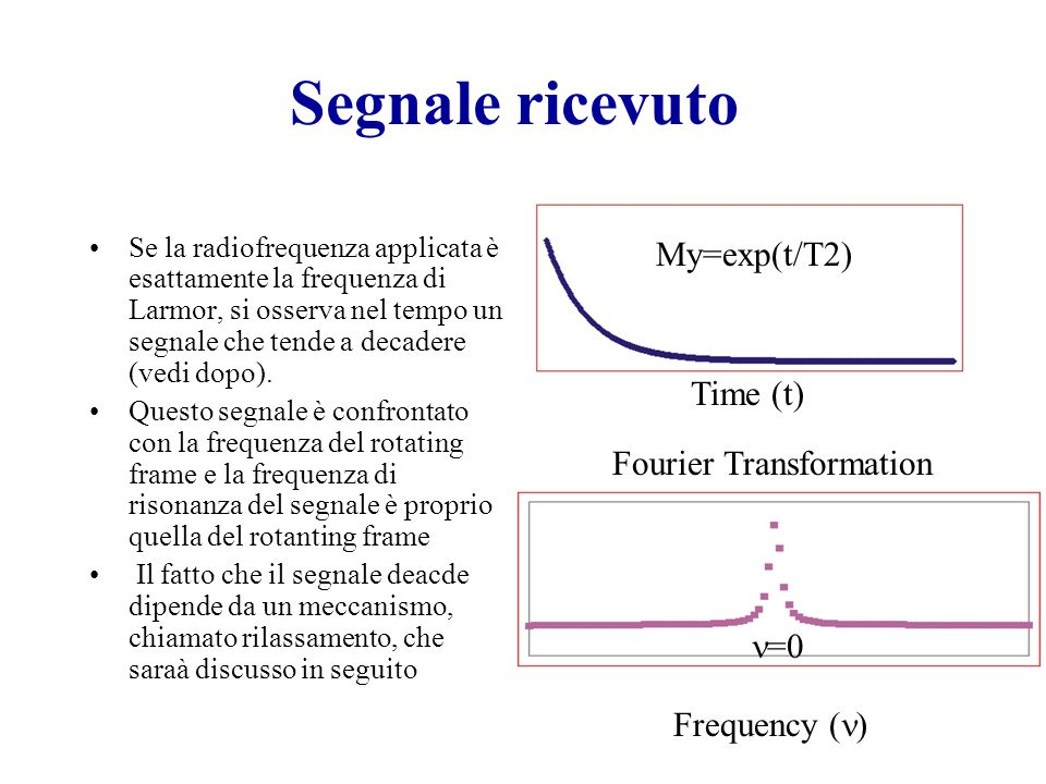 Segnale ricevuto My=exp(t/T2) Time (t) Fourier Transformation n=0