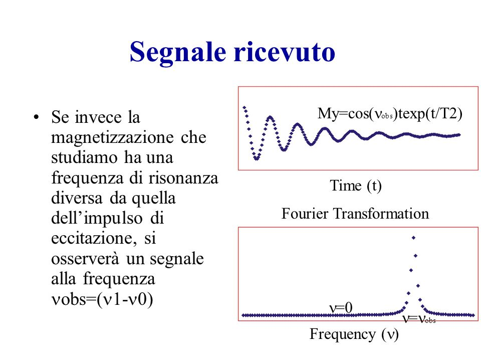 Segnale ricevuto My=cos(nobs)texp(t/T2)