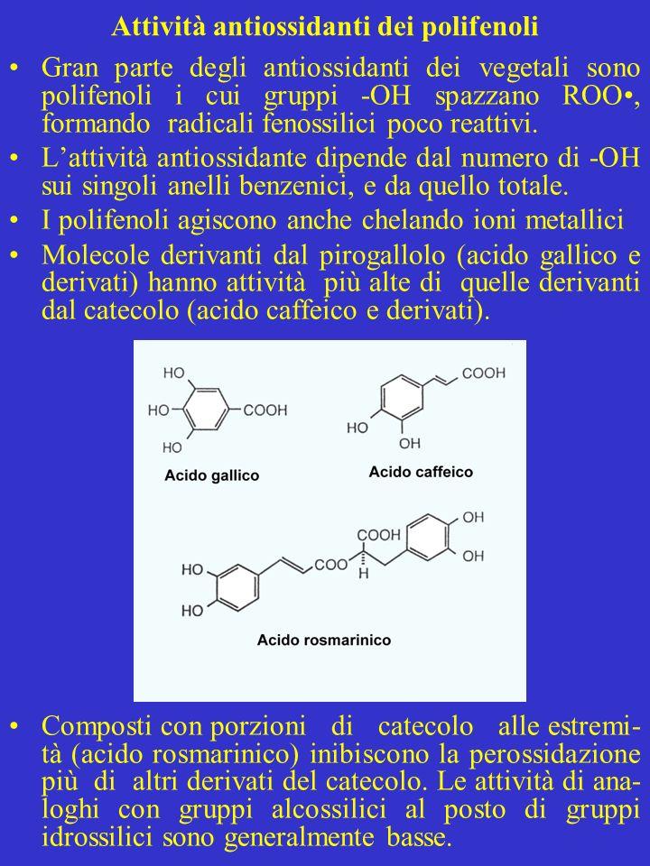 Attività antiossidanti dei polifenoli