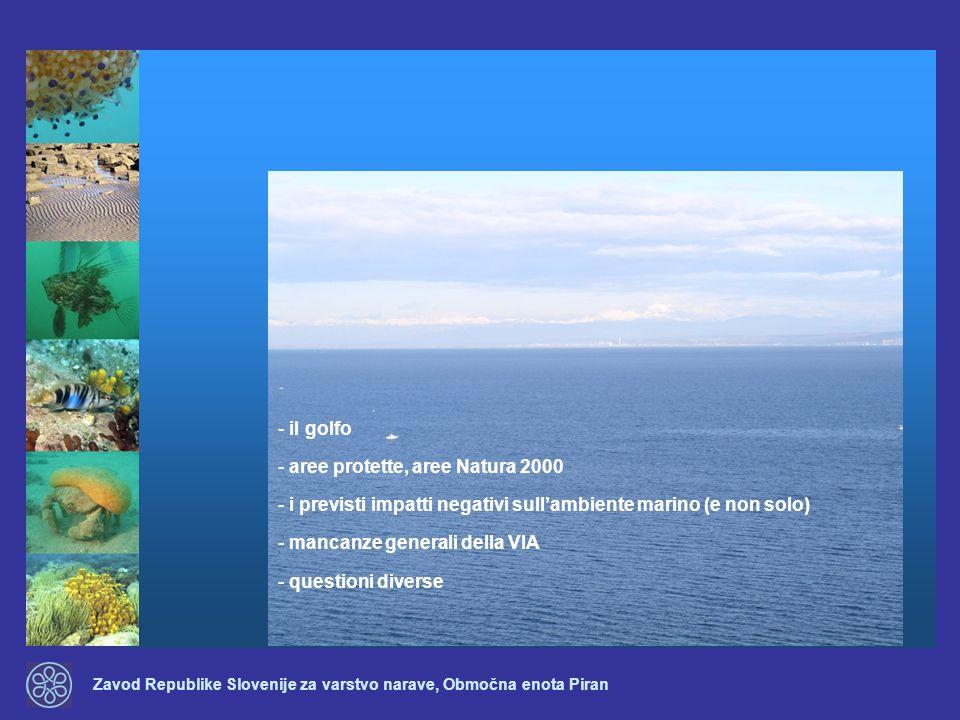 il golfo aree protette, aree Natura 2000. i previsti impatti negativi sull'ambiente marino (e non solo)