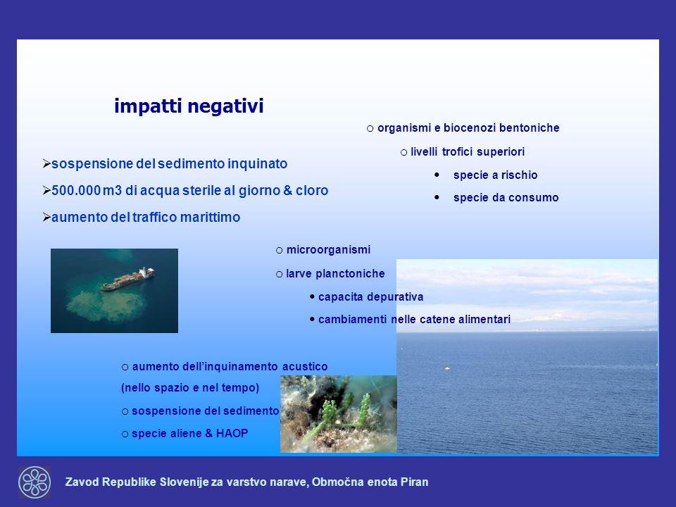 impatti negativi organismi e biocenozi bentoniche