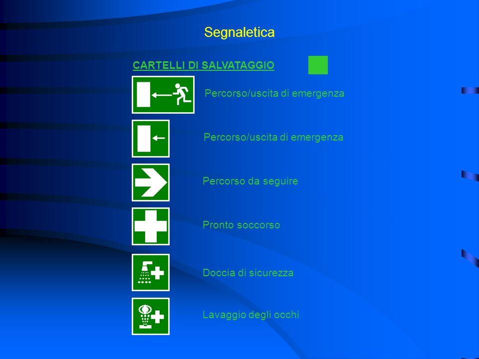 Segnaletica CARTELLI DI SALVATAGGIO Percorso/uscita di emergenza