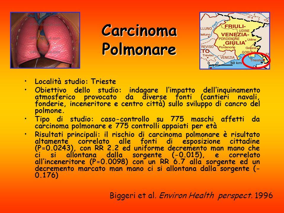 Carcinoma Polmonare Biggeri et al. Environ Health perspect. 1996