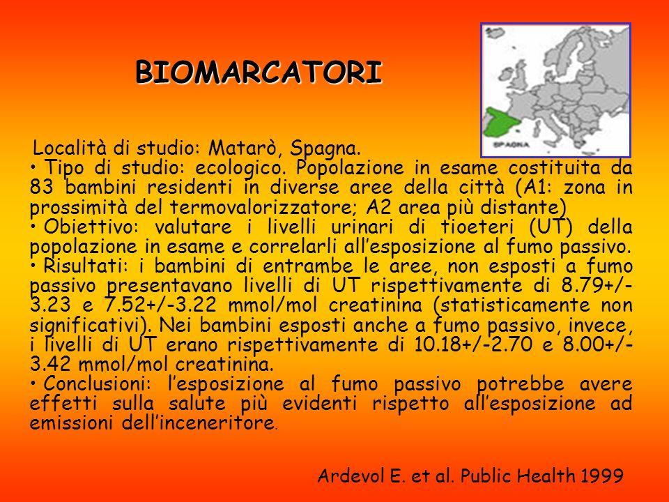 Ardevol E. et al. Public Health 1999
