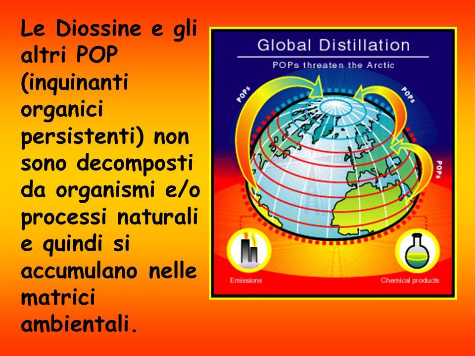 Le Diossine e gli altri POP (inquinanti organici persistenti) non sono decomposti da organismi e/o processi naturali e quindi si accumulano nelle matrici ambientali.