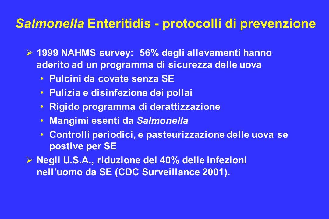 Salmonella Enteritidis - protocolli di prevenzione