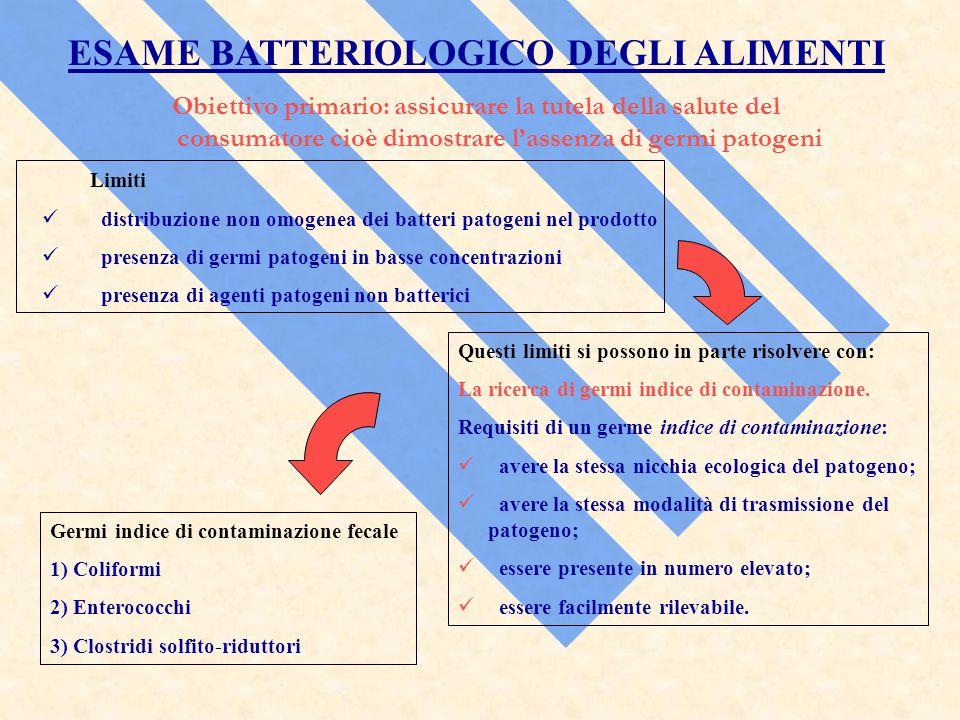 ESAME BATTERIOLOGICO DEGLI ALIMENTI