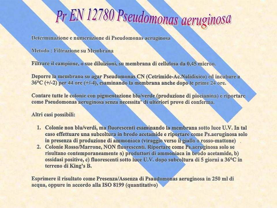 Pr EN 12780 Pseudomonas aeruginosa
