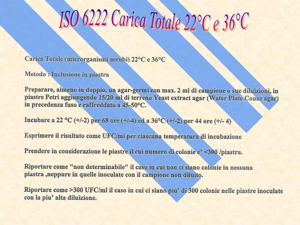 ISO 6222 Carica Totale 22°C e 36°C
