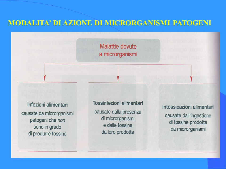 MODALITA' DI AZIONE DI MICRORGANISMI PATOGENI