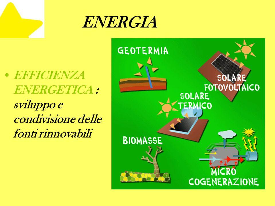 ENERGIA EFFICIENZA ENERGETICA : sviluppo e condivisione delle fonti rinnovabili