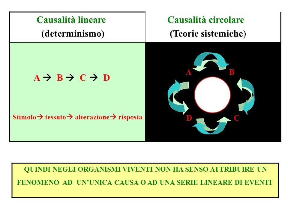 Causalità lineare (determinismo) Causalità circolare