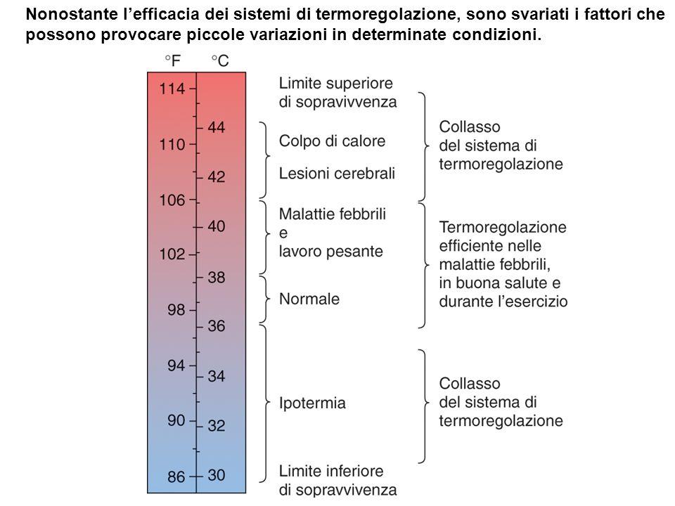 Nonostante l'efficacia dei sistemi di termoregolazione, sono svariati i fattori che possono provocare piccole variazioni in determinate condizioni.