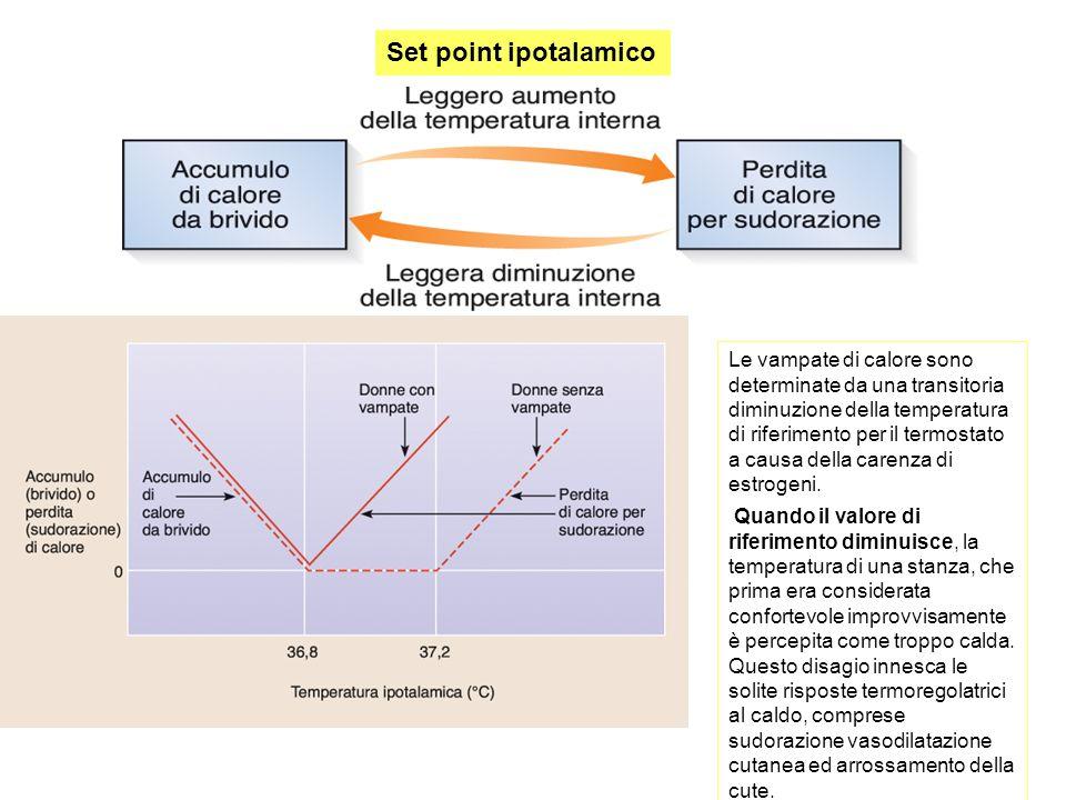 Set point ipotalamico