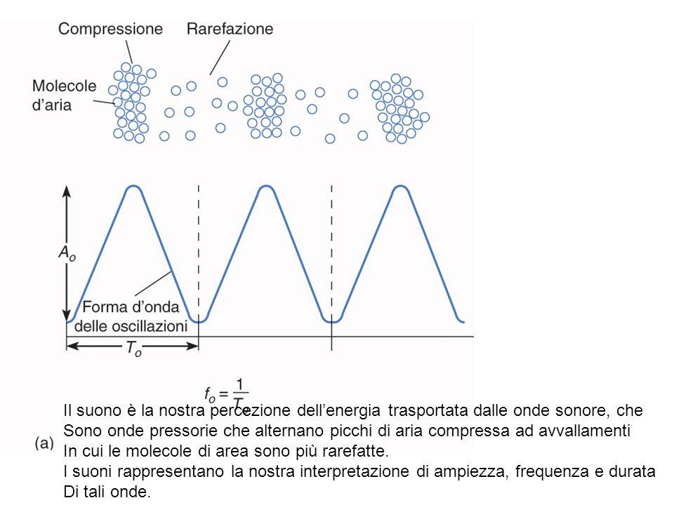 Il suono è la nostra percezione dell'energia trasportata dalle onde sonore, che