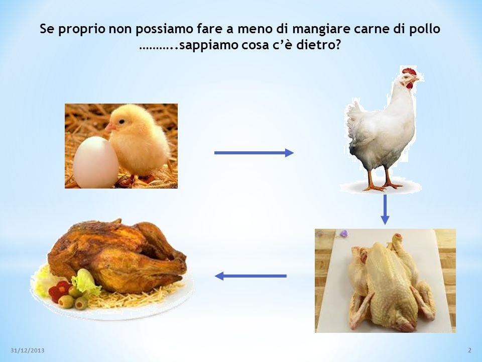 Se proprio non possiamo fare a meno di mangiare carne di pollo ………