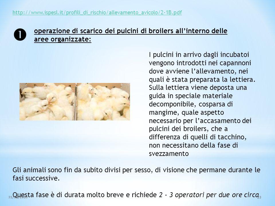 http://www.ispesl.it/profili_di_rischio/allevamento_avicolo/2-1B.pdf 