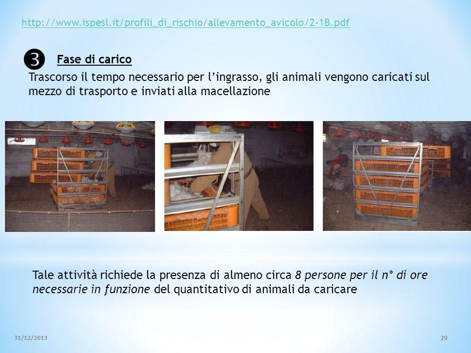 http://www.ispesl.it/profili_di_rischio/allevamento_avicolo/2-1B.pdf  Fase di carico.