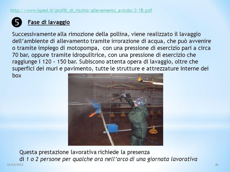 http://www.ispesl.it/profili_di_rischio/allevamento_avicolo/2-1B.pdf  Fase di lavaggio.