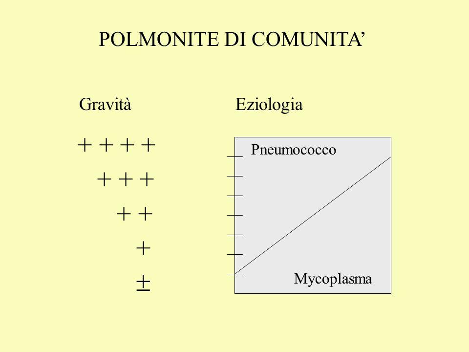 POLMONITE DI COMUNITA'