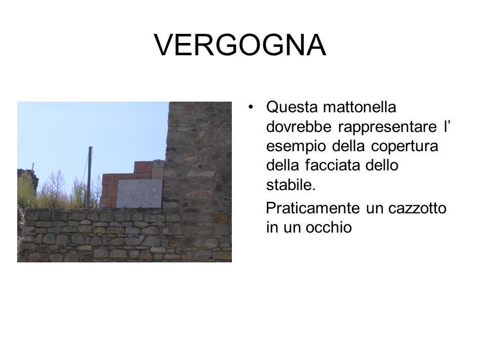 VERGOGNA Questa mattonella dovrebbe rappresentare l' esempio della copertura della facciata dello stabile.