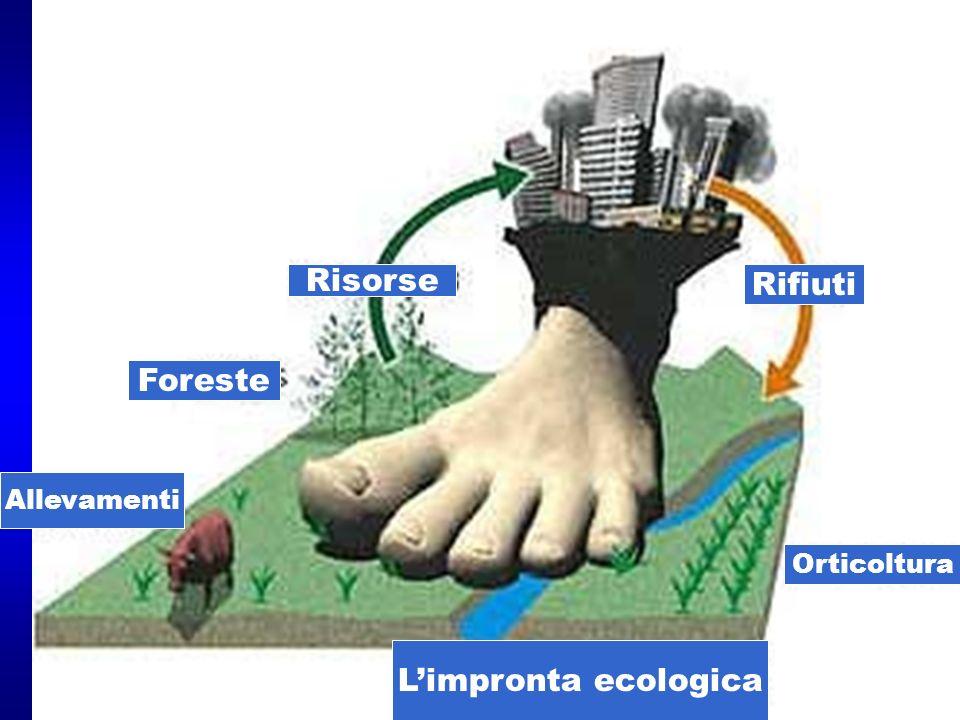Risorse Rifiuti Foreste L'impronta ecologica