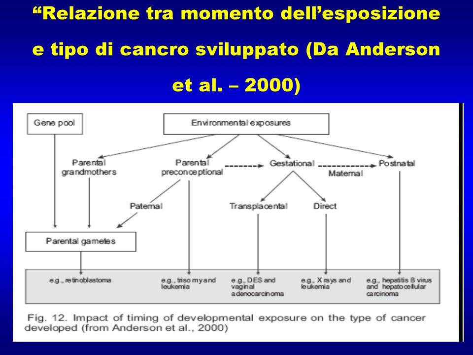 Relazione tra momento dell'esposizione e tipo di cancro sviluppato (Da Anderson et al. – 2000)
