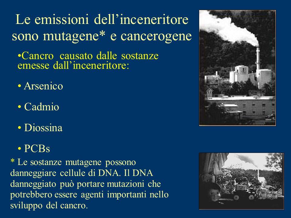 Le emissioni dell'inceneritore sono mutagene* e cancerogene