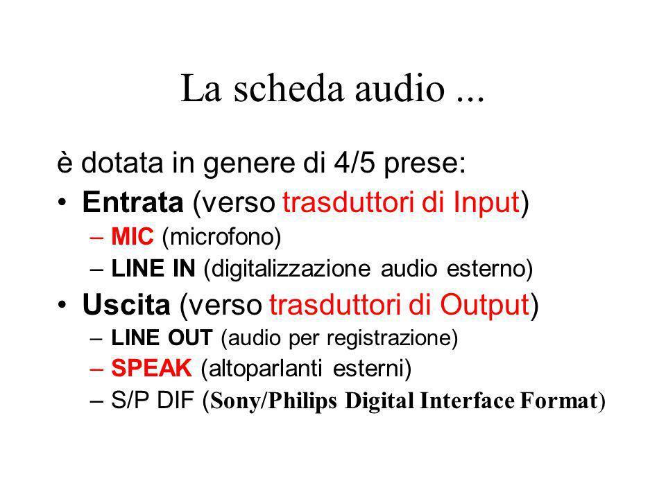 La scheda audio ... è dotata in genere di 4/5 prese: