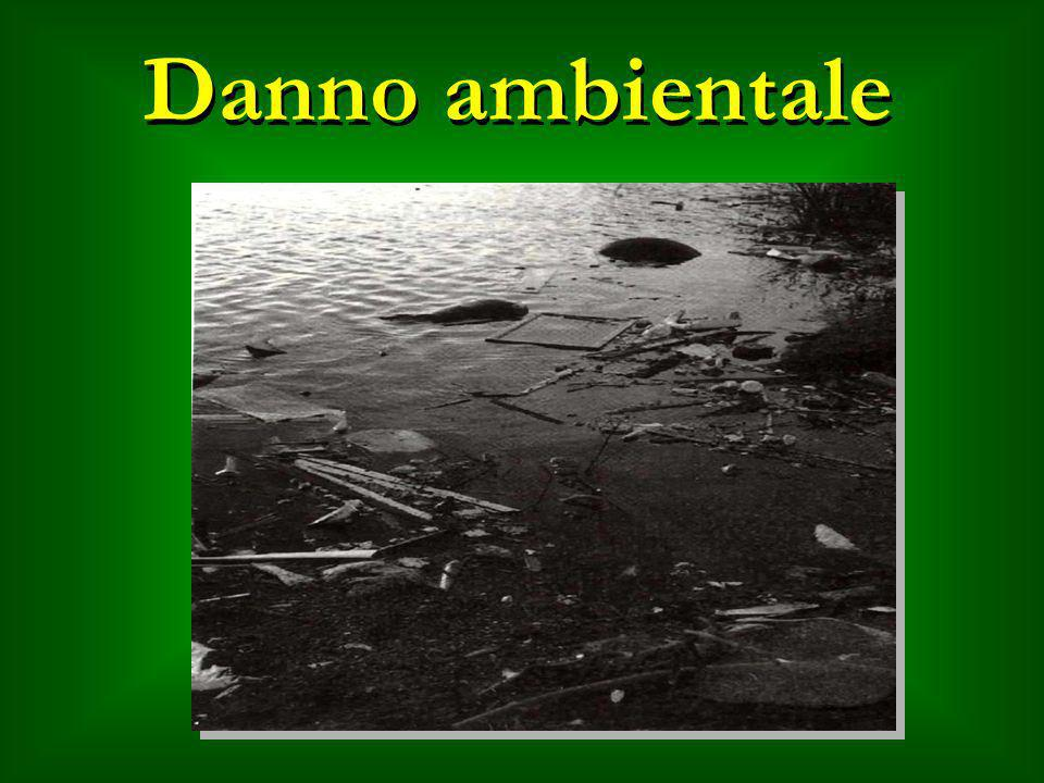Danno ambientale