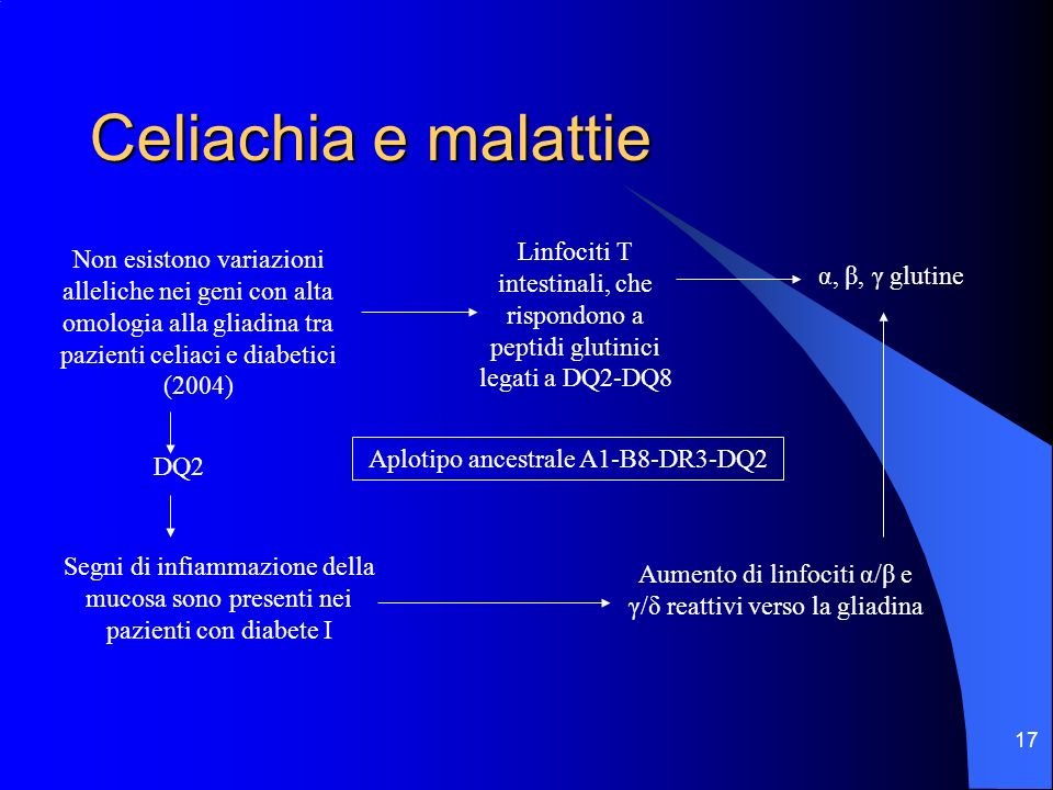 Celiachia e malattieLinfociti T intestinali, che rispondono a peptidi glutinici legati a DQ2-DQ8.