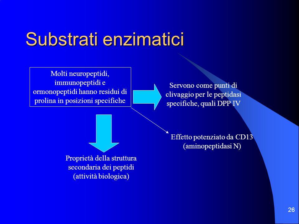 Substrati enzimatici Molti neuropeptidi, immunopeptidi e ormonopeptidi hanno residui di prolina in posizioni specifiche.
