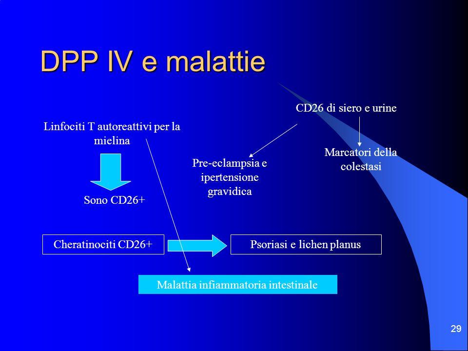DPP IV e malattie CD26 di siero e urine