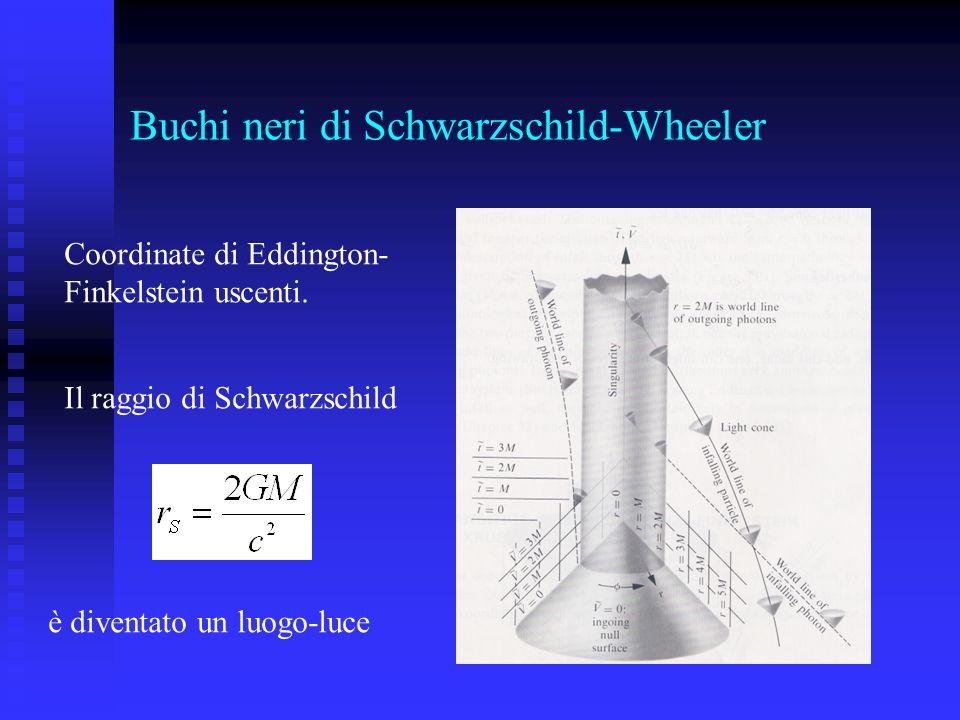 Buchi neri di Schwarzschild-Wheeler