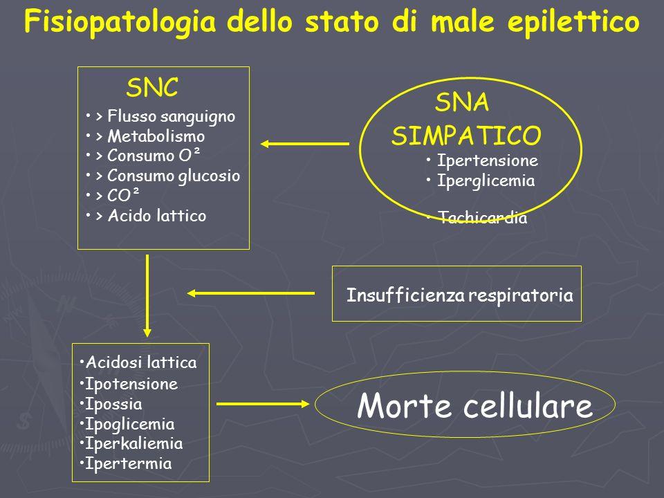 Fisiopatologia dello stato di male epilettico