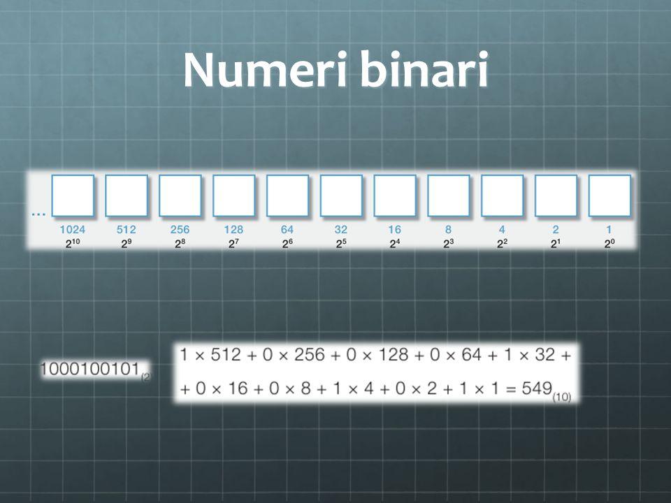Numeri binari