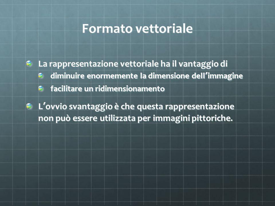 Formato vettoriale La rappresentazione vettoriale ha il vantaggio di