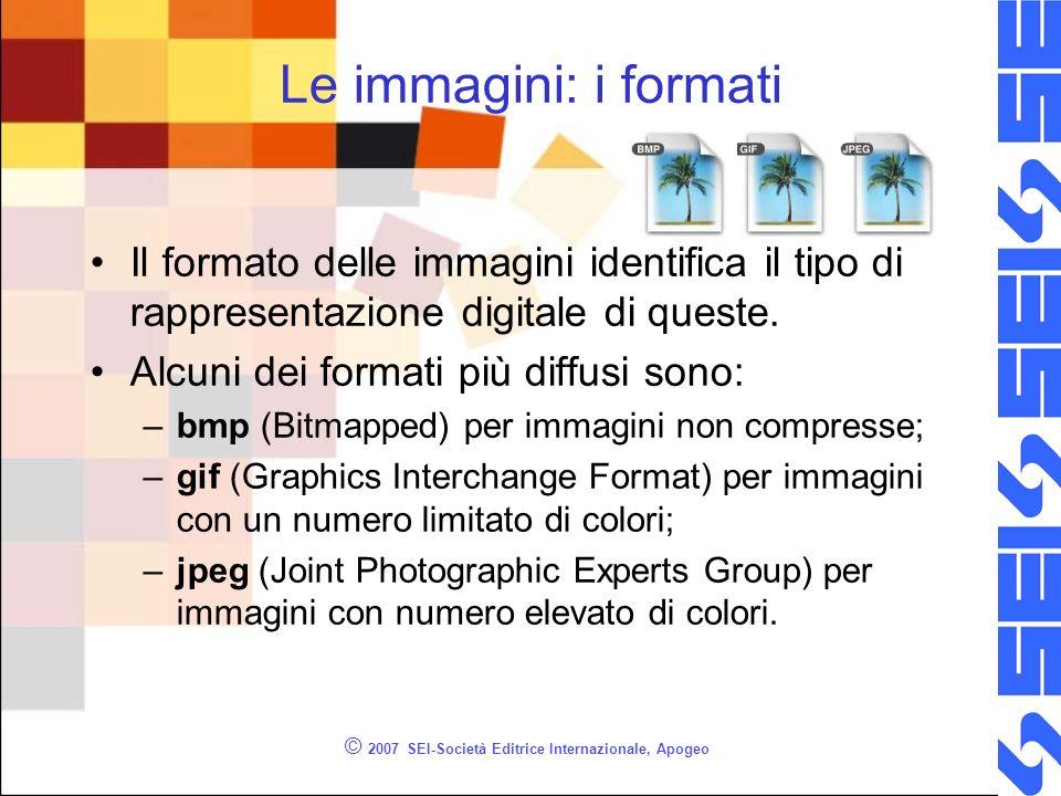 © 2007 SEI-Società Editrice Internazionale, Apogeo