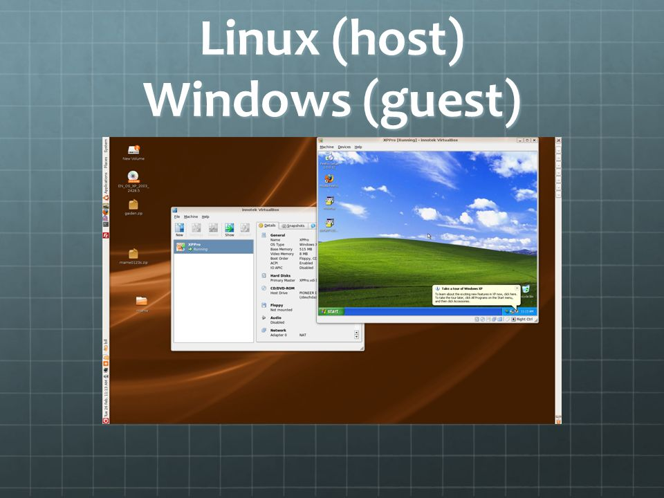 Linux (host) Windows (guest)