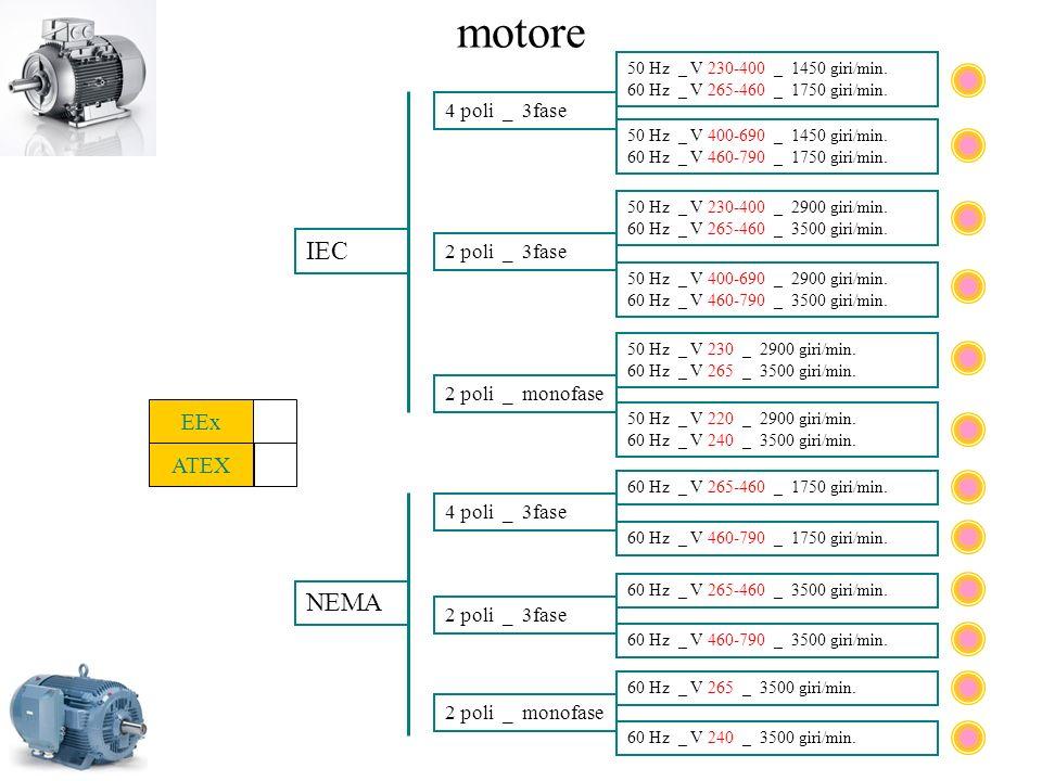 motore IEC NEMA EEx ATEX 4 poli _ 3fase 2 poli _ 3fase